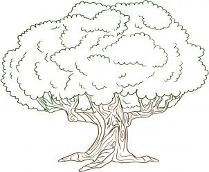 нарисованный дуб