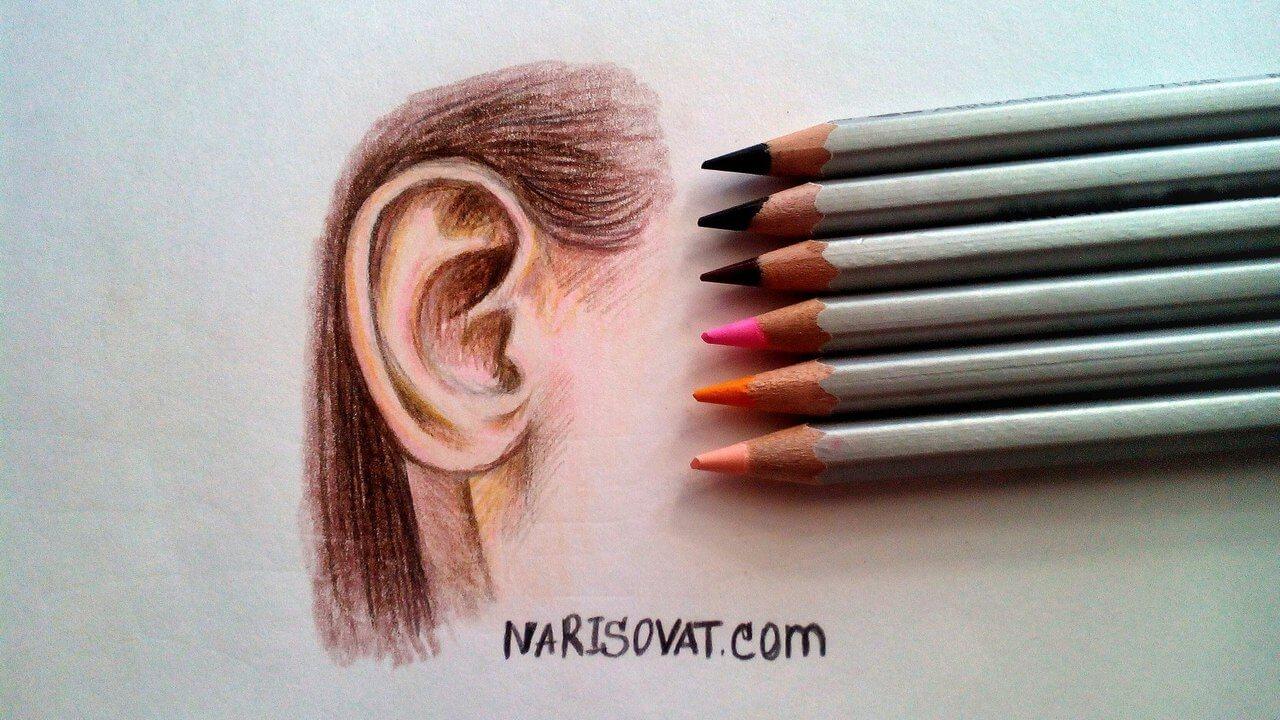 нарисованное ухо